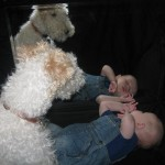 Wordless Wednesday: Kids & Pets