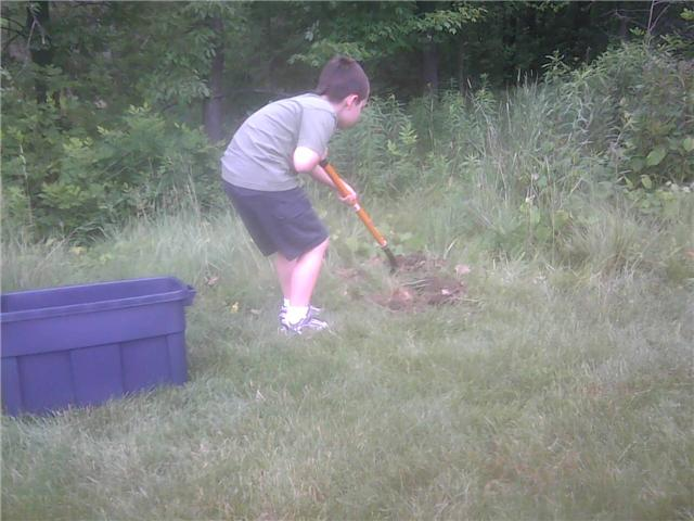 Noah burying Scarr
