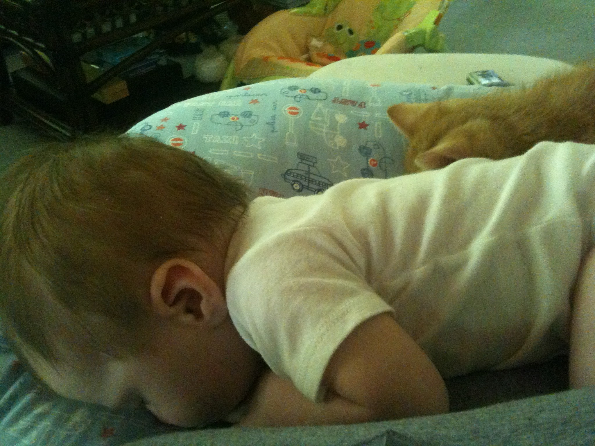 Little Man and his kitty, Ollie napping after nursing