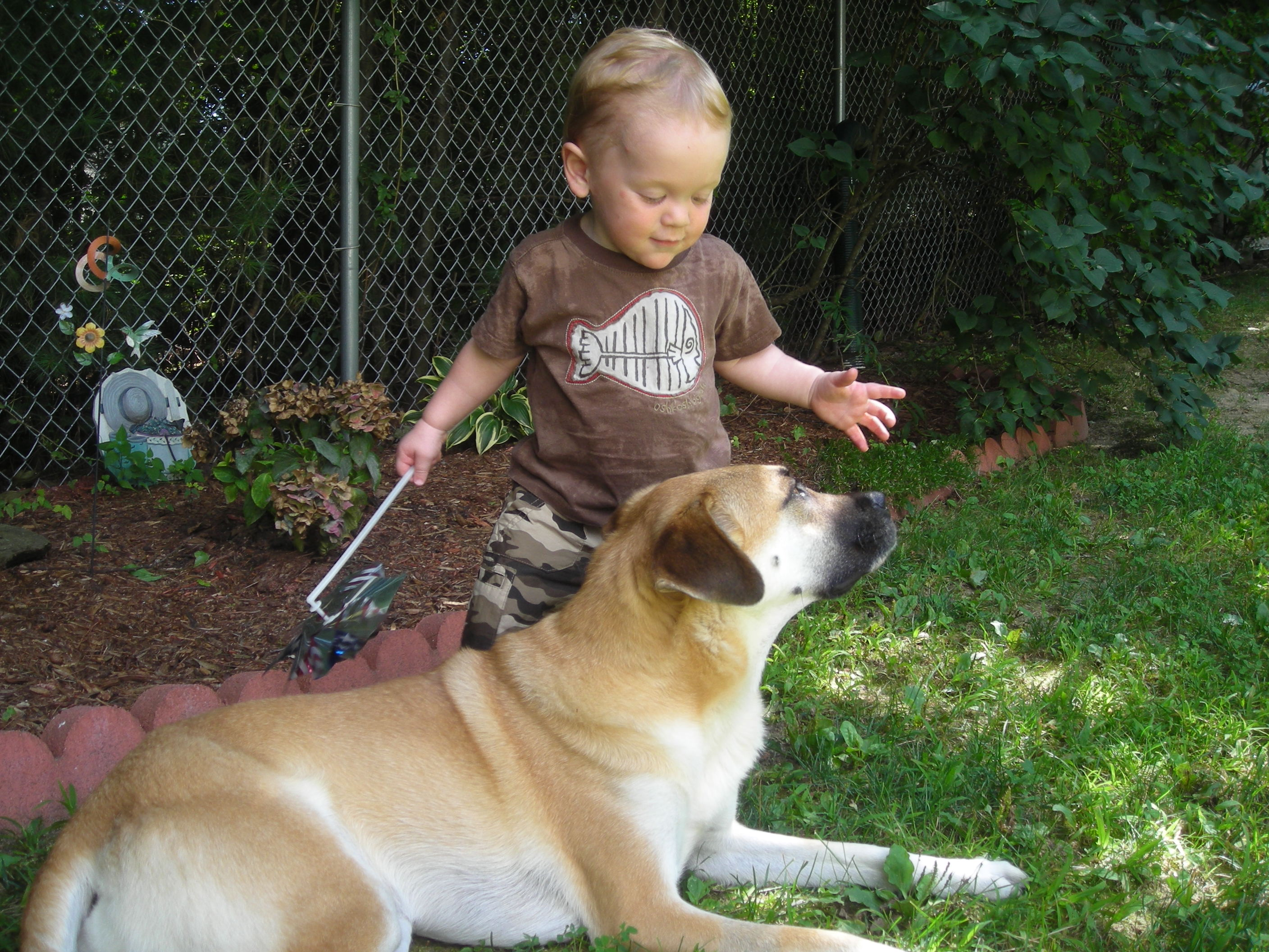 3 and 1/2 yo Ryder & our dog Mackey