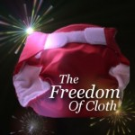 Winners and Coupon codes from Freedom of Cloth Giveaways with The Artful Mama