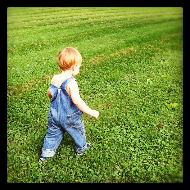 Running in Grass