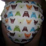 Giveaway: Thirsties Duo All-In-One Cloth Diaper Plus Hemp Inserts — $25.75 ARV {8.25; US/Can} CLOSED