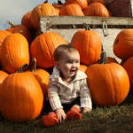 Wordless Wednesday: Pumpkins