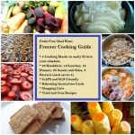 Giveaway: Grain Free Meal Plans, Freezer Cooking Guide eBook $19 ARV CLOSED