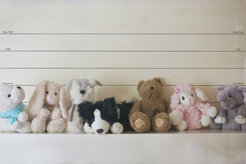 toy stuffed animals lined up