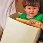Wordless Wednesday: Toy Box