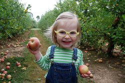 Visit to Local Orchard, by Amy Serotkin