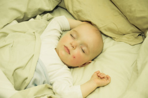 Bed-Sharing Options with a Toddler at Natural Parents Network